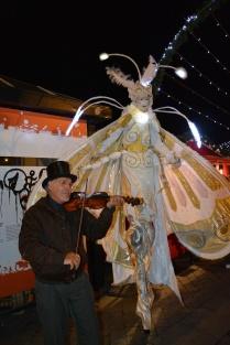 Le violon accompagne le papillon
